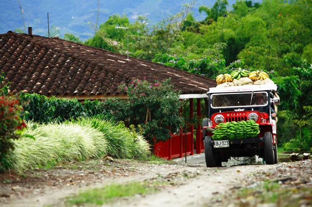 transporte_terrestre_turistico_eje_cafetero_colombia_gente.640x.jpg